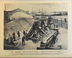 """SENEGAL - N°245 Port De Commerce De DAKAR - Collection """"Pour L'Enseignement Vivant"""" - Colonies Françaises - TBE - Collections"""
