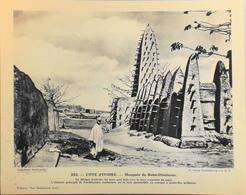 """COTE D'IVOIRE - N°253 Mosquée De BOBO-DIOULASSO - Collection """"Pour L'Enseignement Vivant"""" - Colonies Françaises - TBE - Collections"""