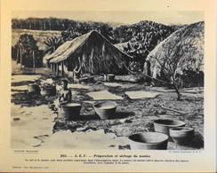 """A.E.F. - N°255 Préparation Et Séchage Du Manioc - Collection """"Pour L'Enseignement Vivant"""" - Colonies Françaises - TBE - Collections"""