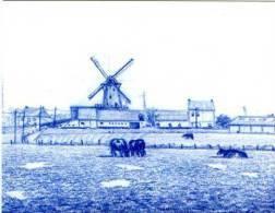 MOORSELE - Wevelgem (W.Vl.) - Molen/moulin - Tekening In Blauw Potlood V.d. Witte Molen Of Grote Macht (Paul Gosselin) - Wevelgem