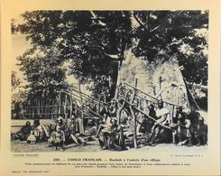 """CONGO FRANC - N°256 Baobab à L'Entrée D'un Village - Collection """"Pour L'Enseignement Vivant"""" - Colonies Françaises - TBE - Collections"""