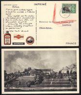 SAINTE HELENE - ST HELENA  - PLASMARINE / 1952 CHER DOCTEUR - DEAR DOCTOR CARTE POSTALE PUB POUR LA FRANCE (ref DD178) - Saint Helena Island