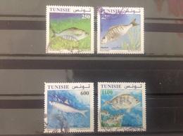 Tunesië / Tunisia - Complete Set Vissen 2012 - Tunesië (1956-...)