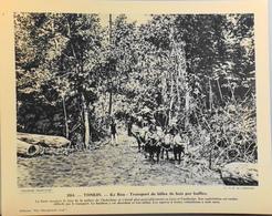 """TONKIN - N°284 - KE BOU Transport De Billes De Bois -Collection """"Pour L'Enseignement Vivant"""" - Colonies Françaises - TBE - Collections"""