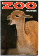 Dierentuin Antwerpen Zoo Anvers  Boekje Met Veel Foto's Blz 32 - Livres, BD, Revues