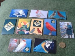 SPAIN. LOTE DE 10 CALENDARIOS DE BOLSILLO 2013 PÁJAROS PAJARERÍAS CRIADORES NACIONALES, BIRD BIRDS CALENDAR CALENDARS - Calendarios