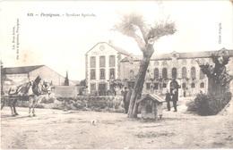 FR66 PERPIGNAN - Brun 632 - Syndicat Agricole - Attelage - Animée - Belle - Perpignan