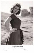 SOPHIA LOREN - Film Star Pin Up PHOTO POSTCARD- Publisher Swiftsure 2000 (20/817) - Postcards