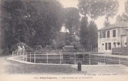 13X - 79 - Saint-Liguaire - Deux-Sèvres - Les Portes De La Roussille - Alix N° 323 - Francia