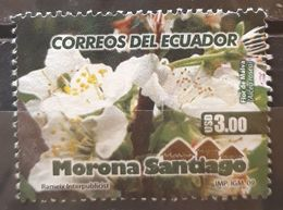 ECUADOR 2009 Tourism. USADO - USED. - Ecuador
