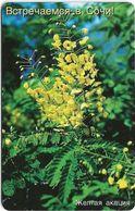 Russia - Sochielektrosvyaz (Krasnodar) - Mimosa Flower - 150Units, Used - Russia