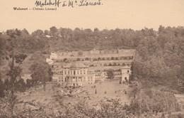 Walcourt , Chateau Léonard - Walcourt