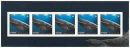 = GREENLAND SHARK = SHARKS = Haie = HAIFISCH = REQUIN = Tiburón = SQUALO = Souvenir Sheet From Uncut Sheet Canada 2018 - Maritiem Leven