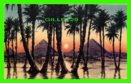 LE CAIRE, EGYPTE - SUNSET NEAR PYRAMIDS -  LENHNERT & LANDROCK - - Le Caire