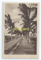 BEIRA - ENTERING MANGA , MOZAMBIQUE. OLD POSTCARD C.1920 #804. - Mozambique