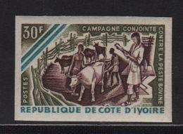 Cote D Ivoire - N°255 Non Dentele ** - Lutte Contre La Fievre Bovine - Côte D'Ivoire (1960-...)