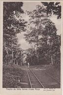 POSTCARD AFRICA - SÃO TOME AND PRINCIPE - TRECHO DE LINHA FERREA - ROÇA MARGARIDA - RAILROAD RAILWAY - Sao Tome And Principe