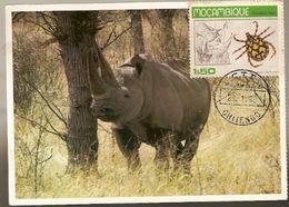 Mozambique & Maximum Card, Rhinocerinos, Chitengo 1980 (7979) - Rhinozerosse