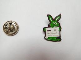 Beau Pin's , Lapin , Rabbit , Moulins - Animals