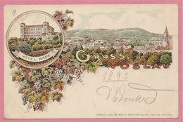 Österreich - GRUSS AUS VÖSLAU - Litho Couleur - Hotel Back - Vorläufer 1895 - 2 Scans - Sin Clasificación