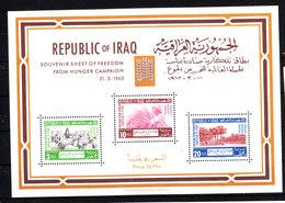 Iraq  -  1963. Campagna Per L' Alimentazione.  From Hunger Campaign. MNH - Alimentazione