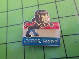 116c Pin's Pins / Beau Et Rare : Thème AUTRES / LION ET DRAPEAU DES PAYS BAS HOLLANDE GODDE MOIEN - Other