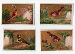 CHROMO Oiseau Arbre Fleurs Papilon Grenouille Mésange Chardonneret Rouge-gorge ... (6 Chromos) - Cromo