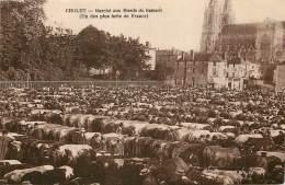 CHOLET - Marché Aux Boeufs Du Samedi - Cholet