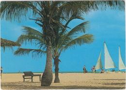 Aruba - Palm Trees, Beaches And Sailighin Aruba   - (Netherlands Antilles) - Aruba