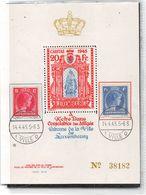 AÑO 1945.- BLOCK DE CARITAS NUMEROTÉ Nº 342 + 348 YV - Blocks & Kleinbögen