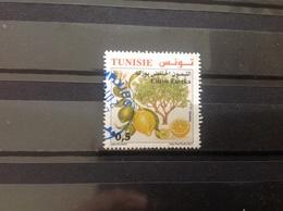 Tunesië / Tunisia - Citrusvruchten (0.5) 2017 - Tunesië (1956-...)