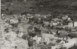 SAHORRE (Pyrénées Orientales) Vue Générale - Photo Prise D'un Point Culminant - Gros Arbre à Gauche - Au Dos: Sahorre - Lieux