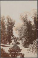 Terrace Gardens, Richmond Upon Thames, Surrey, C.1910s - RP Postcard - Surrey