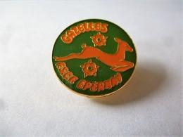 PINS  GYMNASTIQUE GAZELLES FSCF EPERNAY / Base Dorée / 33NAT - Gymnastics