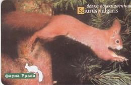 Russia - Fauna Urala - Squirrel 100 Un. - Russia