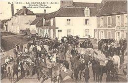 Dépt 62 - LA CAPELLE - Grande Place - Marché Aux Poulains - Éditeur : E. Stévenard, Boulogne-sur-Mer - (chevaux) - France