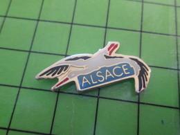 313B Pin's Pins / Beau Et Rare : Thème ANIMAUX / CIGOGNE ALSACE - Animals