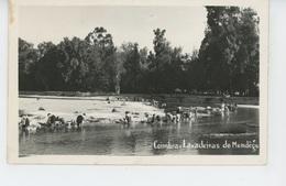 PORTUGAL - COIMBRA - Lavadeiras Do Mondego - Coimbra