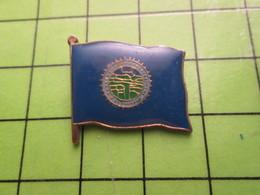 511b Pin's Pins / Beau Et Rare : Thème AUTRES / DRAPEAU BLEU A IDENTIFIER - Other
