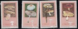 Ciskei 1987 Edible Mushrooms. MNH - Ciskei