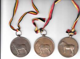 Buggenhout Opdorp 3 Jaarmarkt Medailles 1974/75/76 Paarden - Tourist
