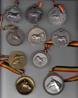 Steenhuffel 10 Oude Jaarmarkt Medailles 1961/64/67/69/74/75/76/79/87/91 Met Verschillende Paarden - Tourist