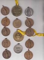 Opwijk 14 Medailles Van De Sint Paulus Processie - Touristiques