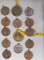 Opwijk 14 Medailles Van De Sint Paulus Processie - Tourist