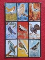 POSTAL POST CARD CARTE POSTALE AVES Y PÁJAROS. FUNDACIÓN DE MUEBLES LA FÁBRICA BELLATERRA SARDANYOLA CÁRABO GAMARUS OWL - Pájaros