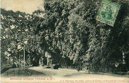 Cpa TRINIDAD - Botanical Garden - Trinidad