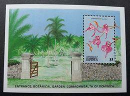 Dominica Botanical Garden Orchid 1989 Orchids Flower Flora Plant Flowers (miniature Sheet) MNH - Dominica (1978-...)