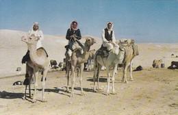 BEDOUINS IN THE NEGEB DESERT. PALPHOT. CIRCA 1960's.- BLEUP - Israël