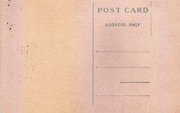 BRITISH INDIA : UNUSED / MINT FORMULA POST CARD OF KING GEORGE V PERIOD - India (...-1947)