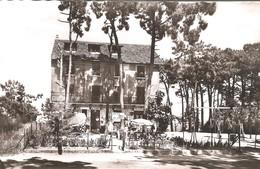SAINT TROJAN Les BAINS -  Hôtel Restaurant La Forêt - Ile D'Oléron